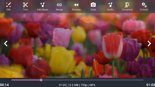 AndroVid Pro Video Editor 4.1.6 [Full Unlocked + PATCHED] 8