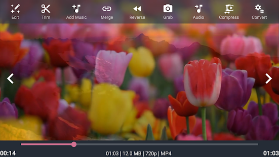AndroVid Pro Video Editor Screenshot