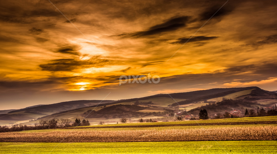 by Silviu Zlot - Landscapes Prairies, Meadows & Fields ( hill, transilvania, nature, outdoor, romania, nikon d810, morning, landscape, silviu zlot, spring, fields )