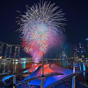 snake year fireworks.jpg