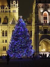 Photo: Az ország karácsonyfája