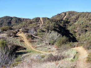 Photo: View north back toward Summit 2583 from Upper Colby Trail. The crazy steep section is at the top.