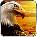 American Eagle Freedom Run Icon