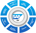 Looking for Experienced SAP Consultants in Chennai – Avaniko