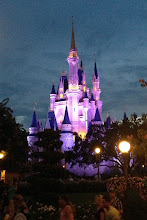 Photo: Nighttime at Disney World http://ow.ly/caYpY