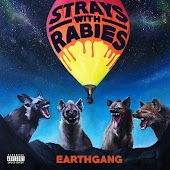 Strays with Rabies