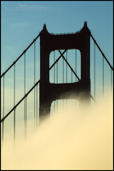 Photo: Fog at sunrise below the North Tower of the Golden Gate Bridge, from the Marin Headlands, California  Hard to tell from this shot, but it really is Golden. Although technically it's International Orange; but who wants to go out of their way to see The International-Orange Gate Bridge?