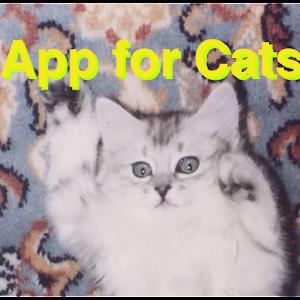猫用アプリ ボール版