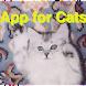猫用アプリ ボール版 - Androidアプリ