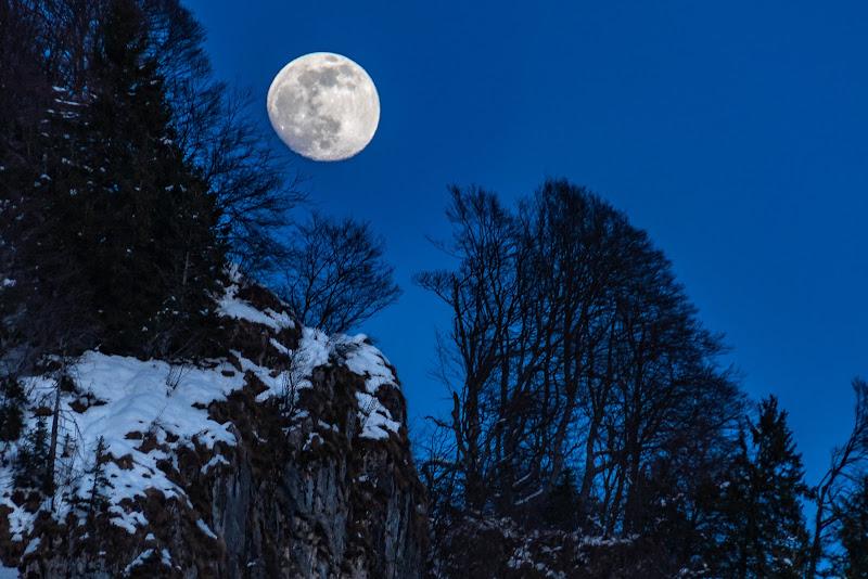 Moonlight di Cris_Cri