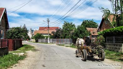 Photo: Mihai Viteazu, comuna in judetul Cluj Str. Ortodoxa (2013.05.10)