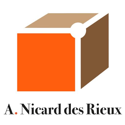 Logo de AGENCE NICARD DES RIEUX