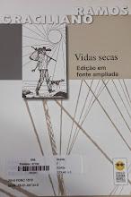 Photo: Vidas secas Rosa, Guimarães  Localização: Braille F R143v  Edição em fonte ampliada