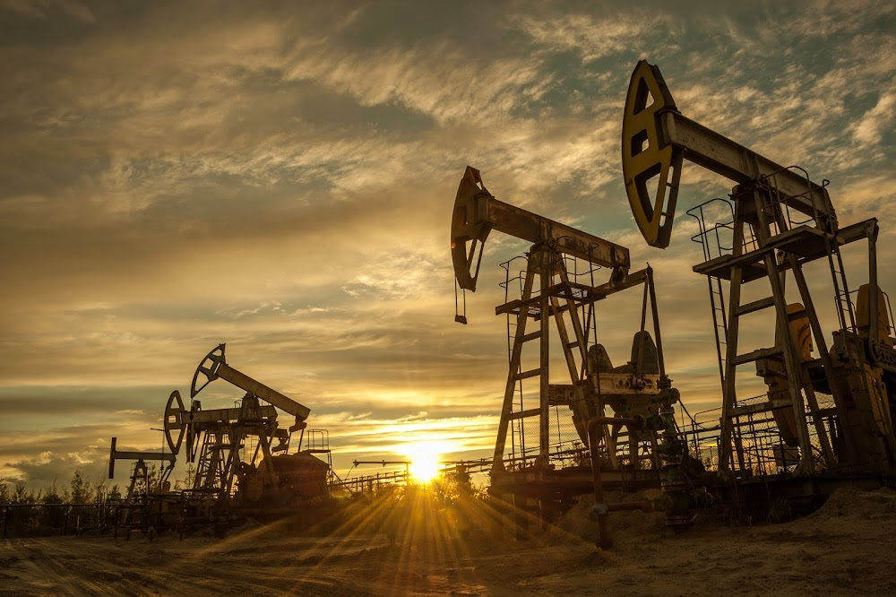 Oil prices steady despite rising US crude oil stocks