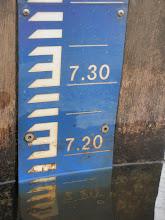 Photo: Loozense Linie  717 cm u507