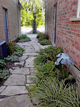 Photo: How to handle that shady area between homes where the grass won't grow. Clear gravel (no fine bits) under the stone lets water flow as it needs too.