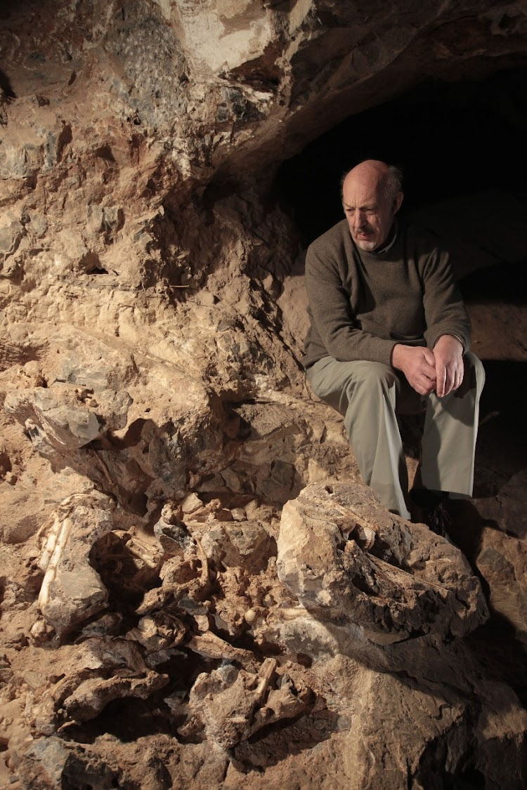 Little Foot was unveiled to the public for the very first time by Professor Ron Clarke who discovered the first four bones of her foot in 1994 in the Sterkfontein caves.
