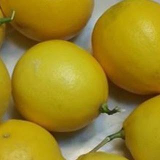 Sugar Impact Mayonnaise with Orange
