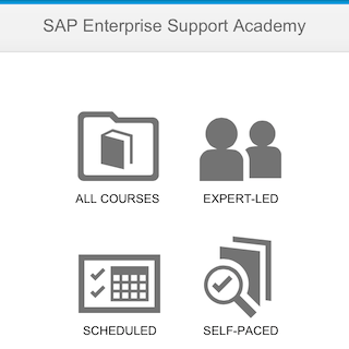 SAP Enterprise Support Academy