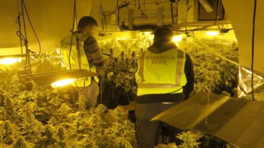 Agentes de la Guardia Civil en una plantación, en una imagen de archivo.