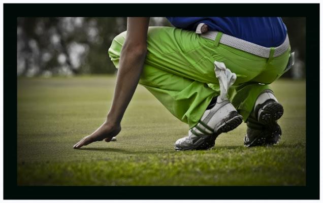 Green trousers on green di marco pardi photo