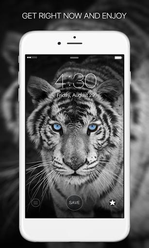 Wallpapers HD (4k Backgrounds) screenshot 5