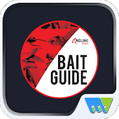 Bait Guide Rock and Surf