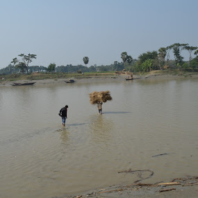 Paddle Sail by Atanu Roy - Nature Up Close Water ( straw, green, harbour, landscape, river )