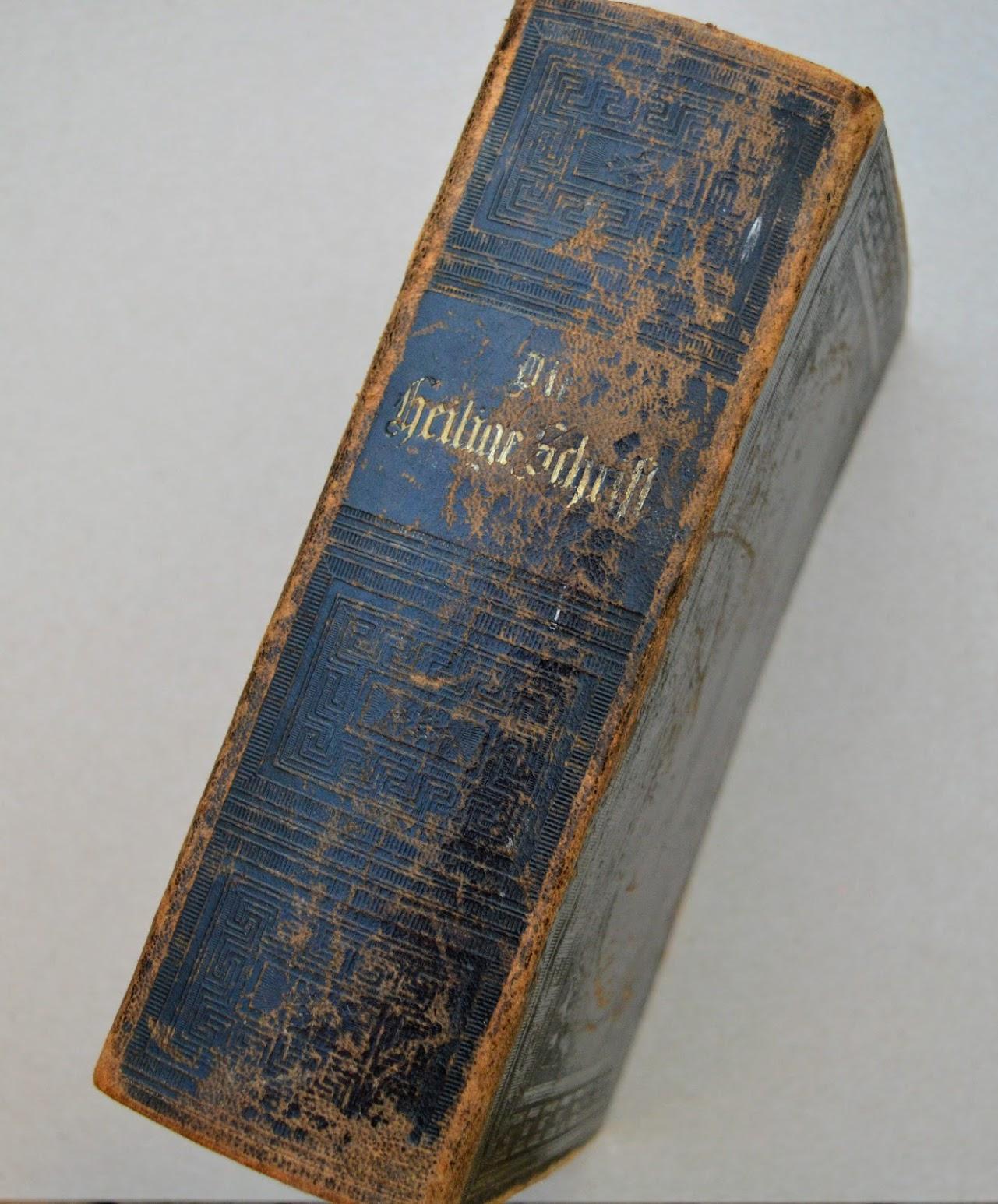 Bibel - Preußische Haupt=Bibelgesellschaft - 1882