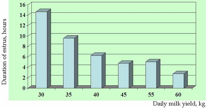 Duration of standing estrus (h) in American Holstein cows with different milk yield (Source: Lopez et al., Anim Reprod Sci 2004; 81, with permission).