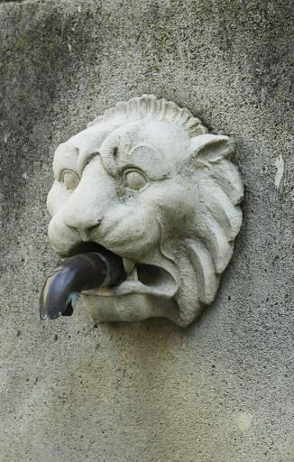 lion de la fontaine de l'église visan