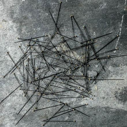 Entomology Pins Knappnålar