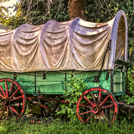 by Judy Rosanno - Transportation Other (  )
