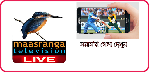 Maasranga Tv Live 5 1 apk download for Android • com