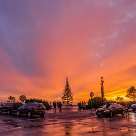 Christmas Sunset by David Johnson - Transportation Automobiles ( holidays, sunset, christmas tree, grand marais, lake superior,  )