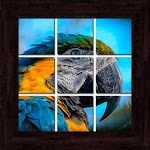 Birds Puzzles - 101 pictures Icon