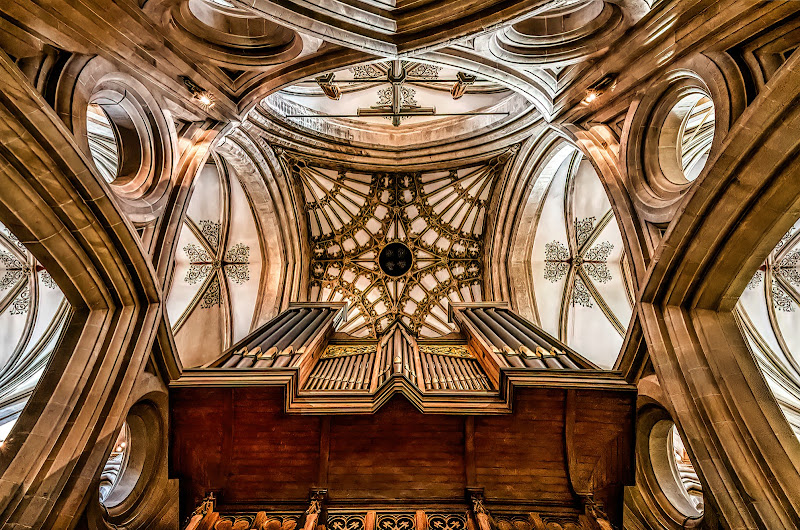 L'organo di Sara Jazbar