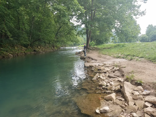 Enjoy the Heart of the Ozarks by Camping near Eureka Springs