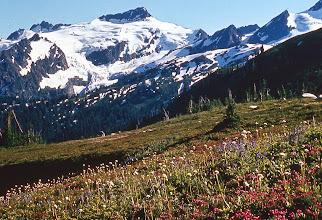 Photo: 47. Clark Mountain and high meadows.
