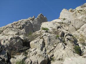 Photo: ...skale...