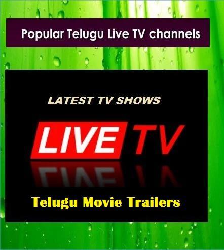 All Telugu live TV HD Channels 1.0 screenshots 2