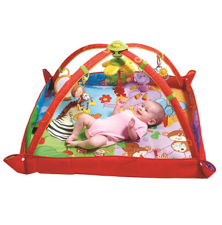 Tiny Love Babygym Move & Play