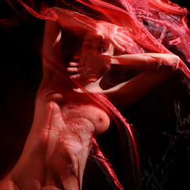 by DJ Cockburn - Nudes & Boudoir Artistic Nude ( sophie french, red, dark hair, lying, nude )