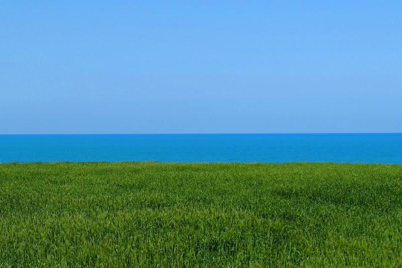 Punta Aderci di Segfault