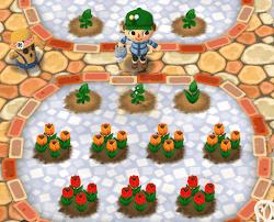 ガーデンエリア