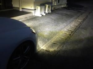 フーガ PNY50のカスタム事例画像 さとうさんの2020年01月16日06:29の投稿