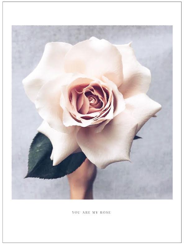 BIG ROSE ARTPRINT