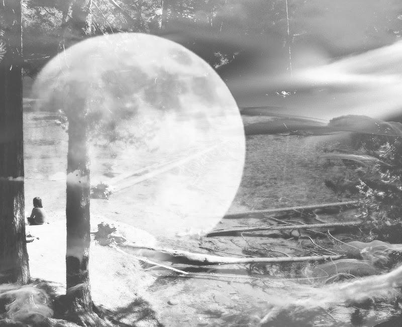 dedicata al mondo dei sensi, passando attraverso i sentimenti, i bisogni quotidiani, in una visione senza passato e senza futuro, tutto ciò che è stato, è e sarà trova armonia alla luce del sole... di Steo