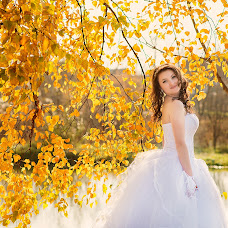 Wedding photographer Elena Gannenko (Gannenko). Photo of 18.01.2016