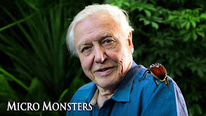 Micro Monsters thumbnail